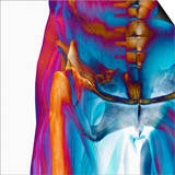 Human Male Hip Showing Bones and Muscles Posters by Carol & Mike Werner