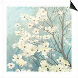 Dogwood Blossoms I Art by James Wiens