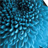 Big Blue Prints by Doug Chinnery