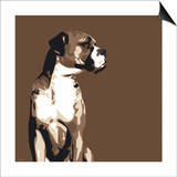 Boxer Print by Emily Burrowes