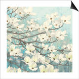 Dogwood Blossoms II Posters by James Wiens