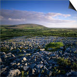 Limestone Pavement, the Burren, County Clare, Munster, Republic of Ireland, Europe Posters by Stuart Black