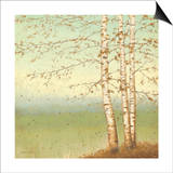 Golden Birch II with Blue Sky Print by James Wiens
