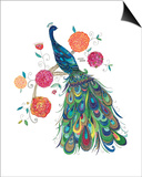 Splendid Peacock Prints by Kim Anderson