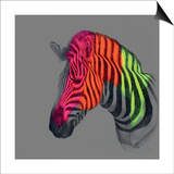 Wild Wild Horse Prints by Louise McNaught