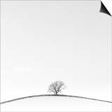 On the Crest Posters by Doug Chinnery