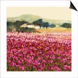 Le Jardin Rouge, Provence Prints by Hazel Barker