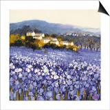 Champs D'Iris, Provence Art by Hazel Barker