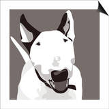 Bull Terrier Posters by Emily Burrowes