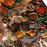 Spices Used in Thai, Indian, Indonesian and Malay Food, Thailand, Southeast Asia, Asia Art