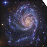 Pinwheel Galaxy, NGC 5457 Posters by  Stocktrek Images