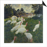 Les Dindons (The Turkeys) Art by Claude Monet