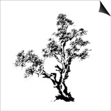 Chinese Traditional Ink Painting, Pine Tree On White Background Prints by  elwynn