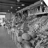 Retail Vegetable Markets Line the Decatur Street Side of the French Market Posters