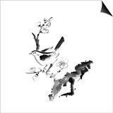Chinese Painting , Plum Blossom And Bird, On White Background Posters by  elwynn