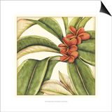 Tropical Blooms and Foliage I Art by Jennifer Goldberger