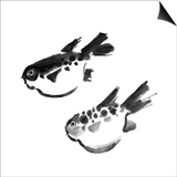Chinese Painting Of Swellfish On White Background Posters by  elwynn