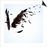 Abstract Image Of Black Wings Against Light Background Prints by Sergey Nivens