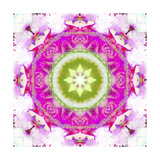 Water Lily Mandala 1 Photographic Print by Alaya Gadeh