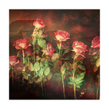 Many Roses II Photographic Print by Alaya Gadeh