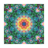 Mandala Earth And Sun Photographic Print by Alaya Gadeh