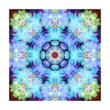 Blue Shining Flower Mandala Photographic Print by Alaya Gadeh