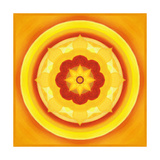 Yellow Blossom Mandala II Painted Photographic Print by Alaya Gadeh
