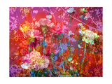 Color Me Beautiful Carnation Photographic Print by Alaya Gadeh