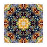 Sun Blossom Mandala Art by Alaya Gadeh