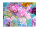Pink Orchids Photographic Print by Alaya Gadeh