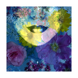 Flower Face Blue Photographic Print by Alaya Gadeh