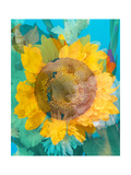 Sunny Summer Photographic Print by Alaya Gadeh