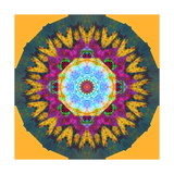 Floral Mandala Octagon Star Photographic Print by Alaya Gadeh