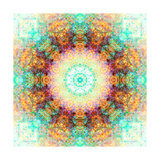Water Sund And Earth Mandala Photographic Print by Alaya Gadeh