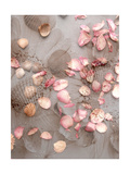 Flower Beach Photographic Print by Alaya Gadeh