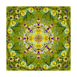 Green Energy MAndala Photographic Print by Alaya Gadeh