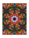 MultiColorful Photographic Print by Alaya Gadeh