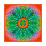 Green Blossom Mandala Photographic Print by Alaya Gadeh