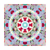 White Red Orchid Mandala II Photographic Print by Alaya Gadeh