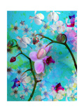 Orchid Paradise Photographic Print by Alaya Gadeh
