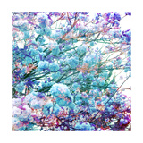 Ice Spring Tree Photographic Print by Alaya Gadeh