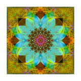Color Harmony Mandala II Photographic Print by Alaya Gadeh