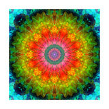 Heart Of Earth Mandala Photographic Print by Alaya Gadeh