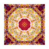Warm Earth Mandala I Posters by Alaya Gadeh