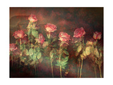 Rosemotion II Photographic Print by Alaya Gadeh