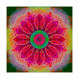 Red Violet Blossom Mandala 2 Photographic Print by Alaya Gadeh