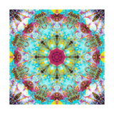 Fantastic Circle Mandala Photographic Print by Alaya Gadeh
