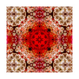 Silvery Golden Red Mandala Photographic Print by Alaya Gadeh