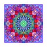Flower Mandala 248 Photographic Print by Alaya Gadeh
