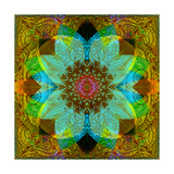 Color Harmony Mandala Photographic Print by Alaya Gadeh
